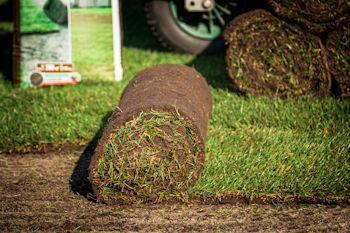 Gazonaanleg graszoden aanleg onderhoud